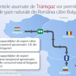 Comisia acceptă angajamentele propuse de Transgaz în vederea facilitării exporturilor de gaze naturale din România